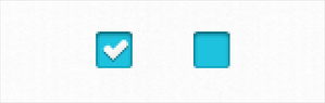 Clearwater Mini UI Kit Checkbox Close-up